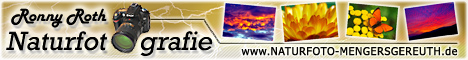 Naturfoto-Galerie, Foto-Linkliste, Top-Liste, Downloads und mehr...